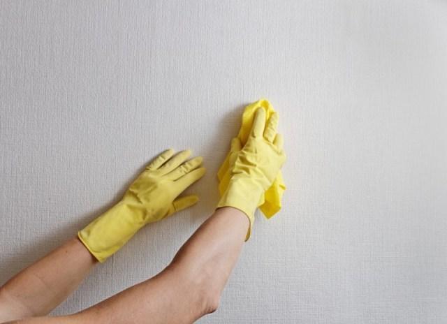 membersihkan wallpaper setelah selesai memasang wallpaper dinding