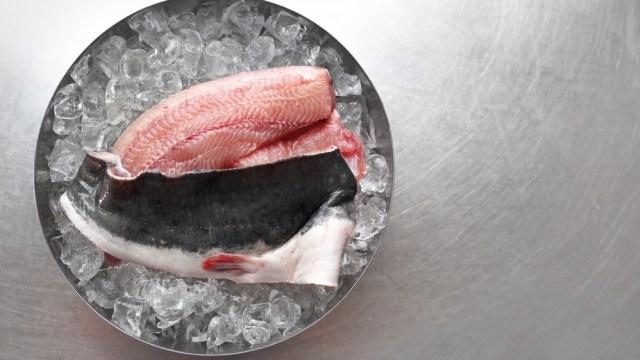 7 Jenis Ikan yang Bisa Jadi Makanan Sehat untuk Ibu Hamil (935694)