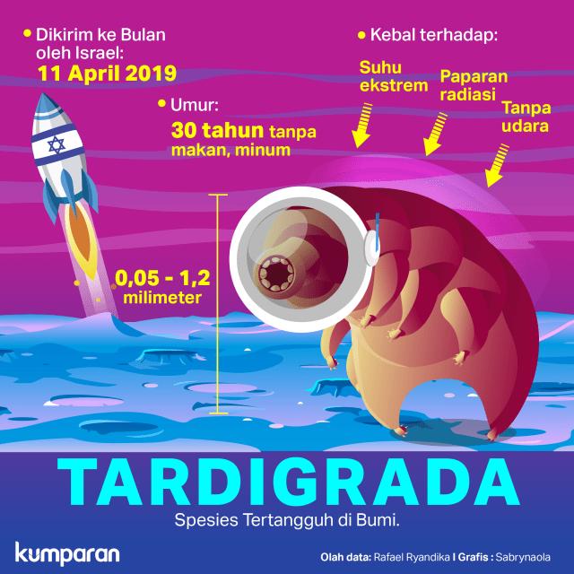 Krispi Tardigrada