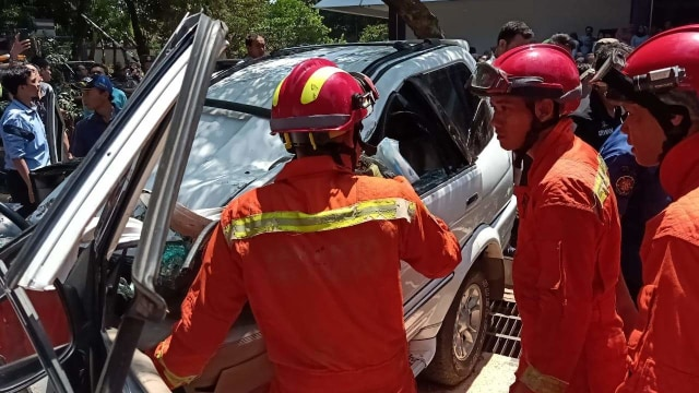 Pohon tumbang timpa mobil di Universitas Pancasila