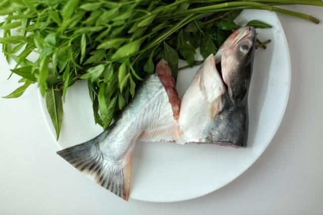 5 Jenis Ikan  Sehat untuk Tingkatkan Daya Tahan Tubuh Keluarga (551822)