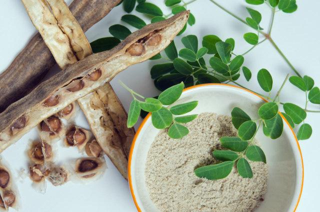 Paduan Herbal Meniran, Daun Kelor, dan Kunyit Bisa Tingkatkan Sistem Imun Tubuh  (75193)