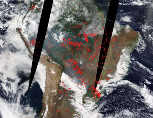 kebakaran di Amazon.