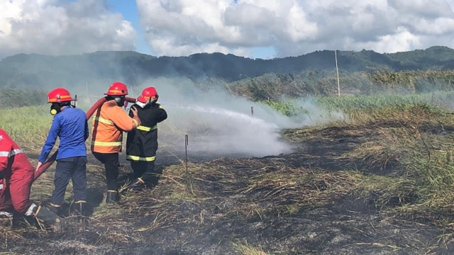 kebakaran hutan di minahasa.jpg