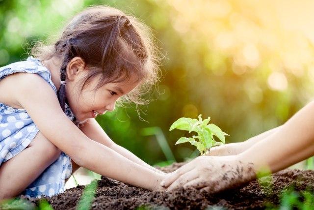 Sekolah Alam, Metode Pendidikan yang Fokus pada Kreativitas Anak (113997)