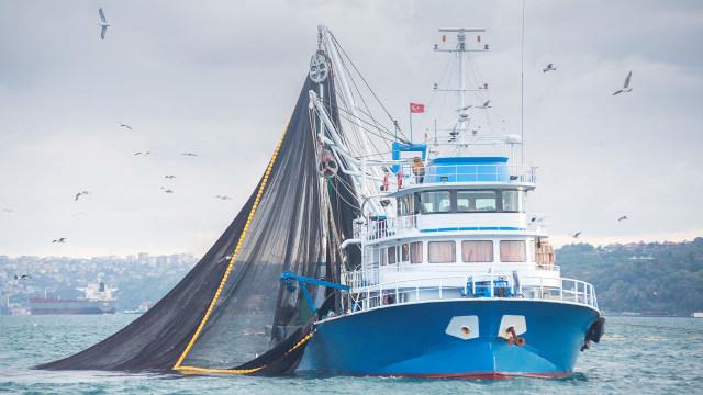 Fakta ABK Asal Indonesia yang Dilarung di Laut Somalia (778669)