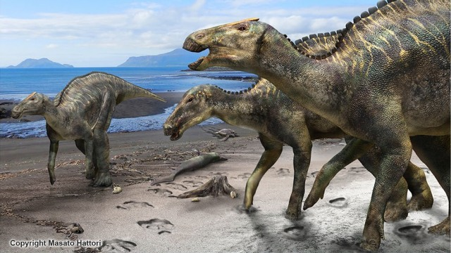 Dinosaurus Mukawaryu