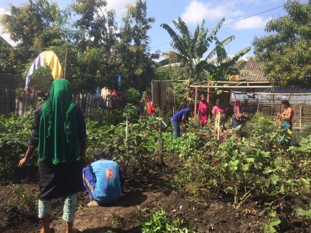 Bawa Perubahan Untuk Desa, Pemuda Dompu Raih Penghargaan (473593)