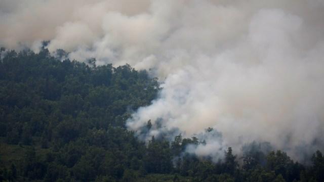 Kebakaran Hutan di Palangkaraya, Kalimantan Tengah