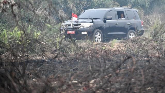 Foto: Jokowi Tinjau Pemadaman Karhutla di Riau (211079)