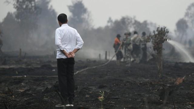 Foto: Jokowi Tinjau Pemadaman Karhutla di Riau (211070)