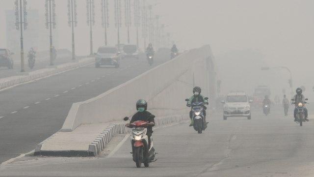 Foto: Jokowi Tinjau Pemadaman Karhutla di Riau (211072)