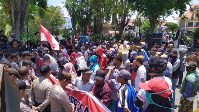 Kasus Hoaks, Frah Sulteng: Penegak Hukum Dinilai Tak Profesional (133290)