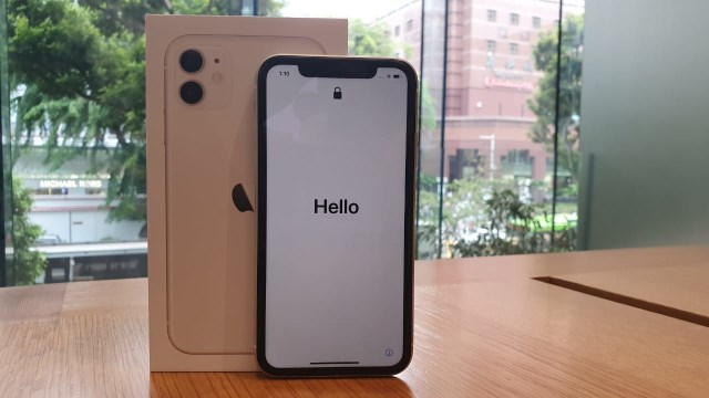 Apple Beri Servis Gratis Layar iPhone 11 yang Bermasalah, Ini Cara Klaimnya (24916)
