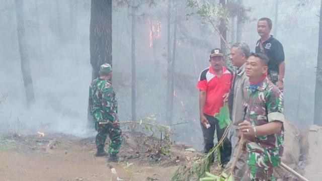 1 Hektare Lahan Hutan di Bantarkawung, Brebes, Terbakar (734884)