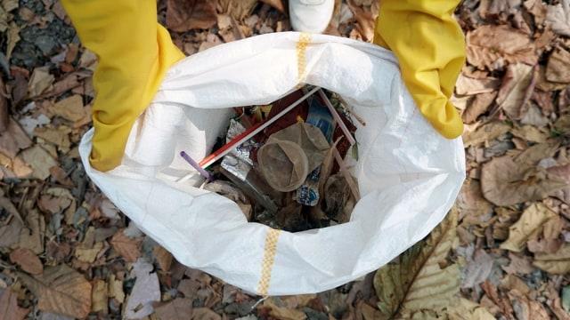 Foto: Ramai-Ramai Memungut Sampah di Hutan Kota Bekasi (54504)