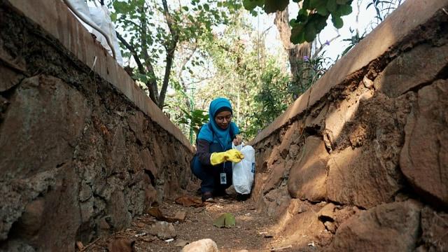Foto: Ramai-Ramai Memungut Sampah di Hutan Kota Bekasi (54508)