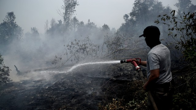 Saat Twitter Gagal Memfasilitasi Mitigasi Bencana Kebakaran Hutan (27715)