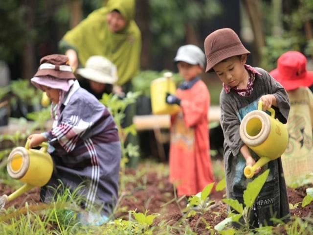 Sekolah Alam, Metode Pendidikan yang Fokus pada Kreativitas Anak (114000)