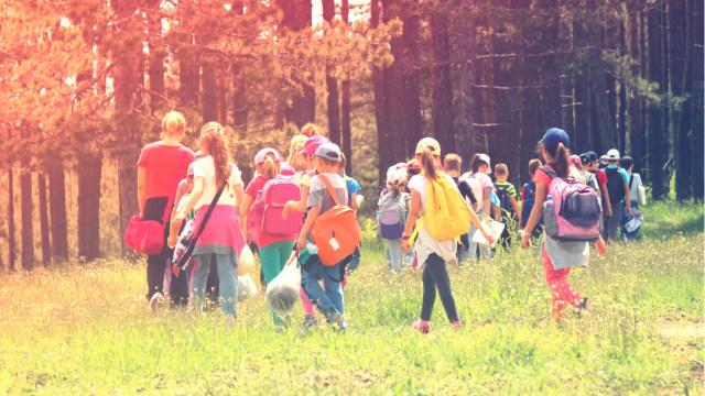 Sekolah Alam, Metode Pendidikan yang Fokus pada Kreativitas Anak (113998)