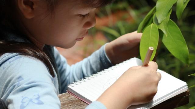 Sekolah Alam, Metode Pendidikan yang Fokus pada Kreativitas Anak (113999)