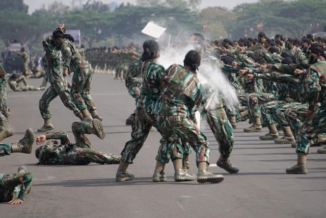 Gladi HUT 74 TNI, Lanud Halim Perdanakusuma, Aksi bela diri prajurit TNI