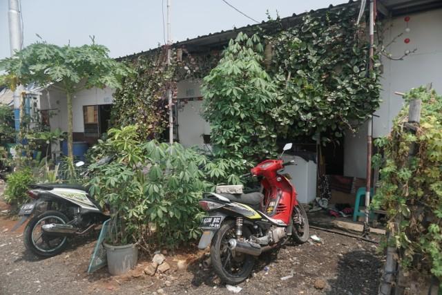 Pemprov Pastikan Rumah Lapis Tak Gusur Warga Kampung Akuarium (235177)