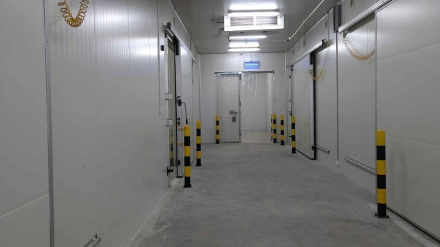 Susi Pudjiastuti Resmikan Cold Storage Raksasa: Ini Bisa Disewa (1353811)