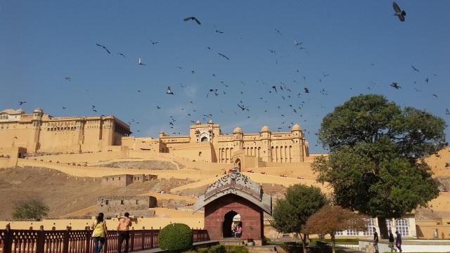 Menjelajahi Amer Fort, Benteng Berarsitektur Megah di Jaipur, India  (399449)