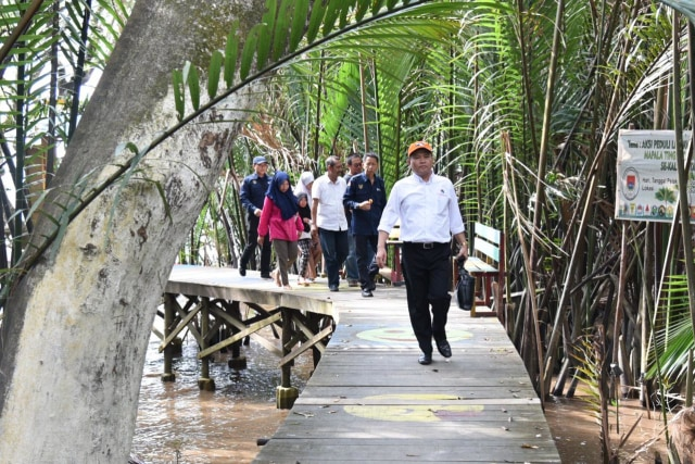 Hutan Mangrove Kubu Raya, Pontianak, Kalimantan Barat