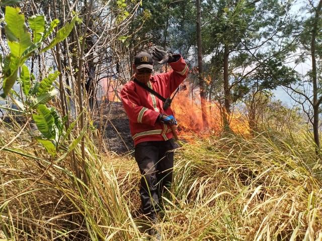 Kebakaran di Gunung Arjuno Padam Setelah 71 Jam (68001)
