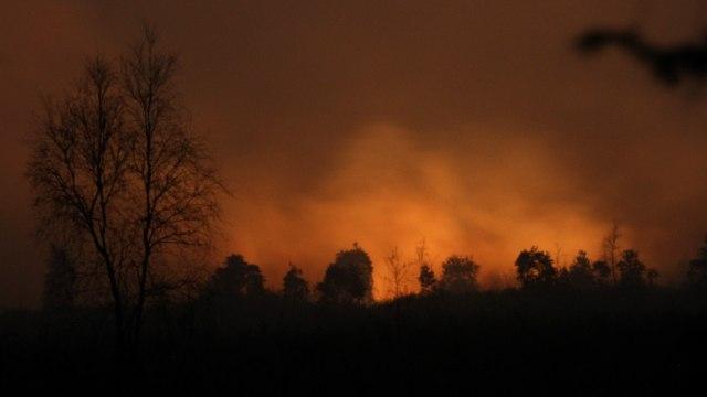14.000 Ilmuwan: Krisis Iklim di Depan Mata, Jangan Abai Jika Tak Mau Celaka (86829)