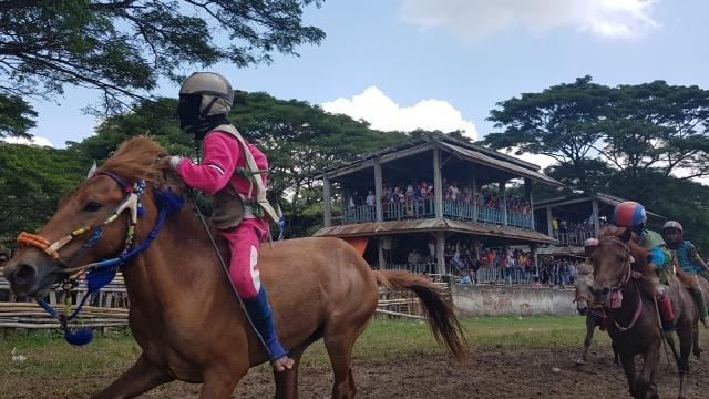 Ketua LPA Desak Joki Cilik di Dompu dan Bima Ditiadakan (154530)