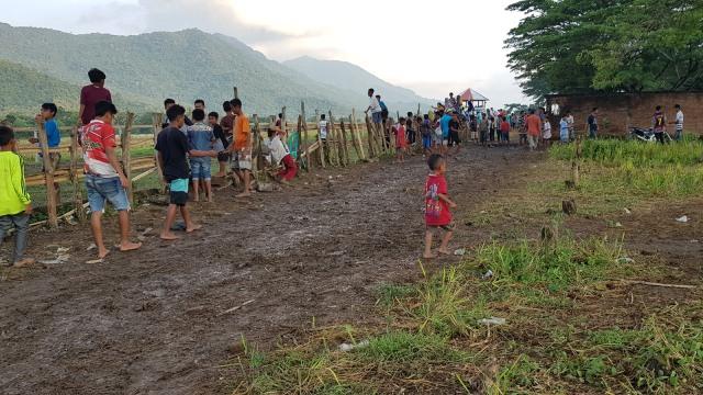 Ketua LPA Desak Joki Cilik di Dompu dan Bima Ditiadakan (154533)