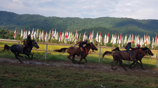 Ketua LPA Desak Joki Cilik di Dompu dan Bima Ditiadakan (154534)