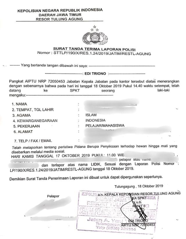 Surat pelaporan polisi, Kucing, Ciu, POTRAIT
