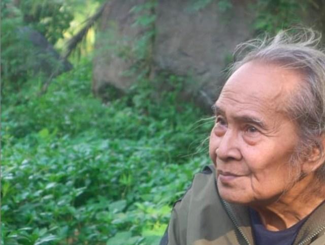 Bambang Sriyono, di Masa Pensiun Jatuh Cinta dengan Pohon  (67443)