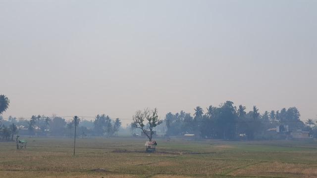 Pertama Kalinya Wilayah Dompu, NTB, Diselimuti Kabut Asap (173470)