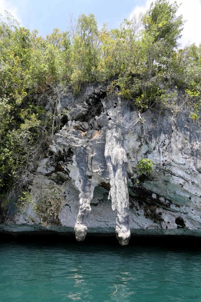 Merapah Indah di Raja Ampat, Papua (12361)