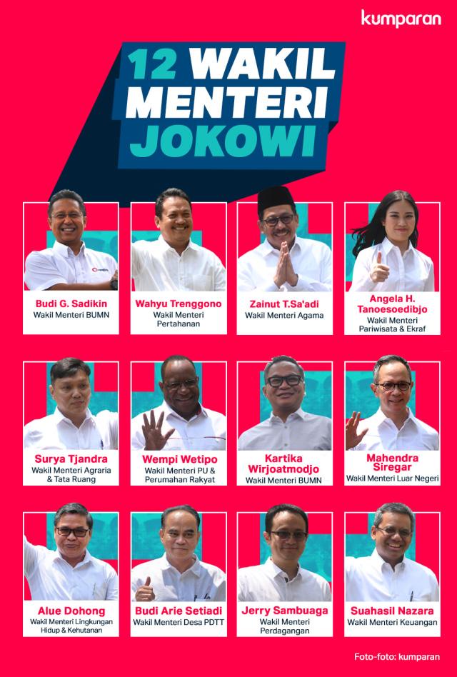 Infog 12 Wakil Menteri Jokowi