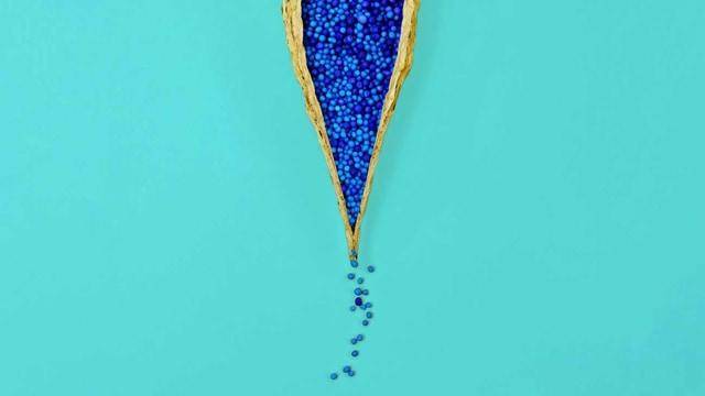 Ilustrasi Vagina