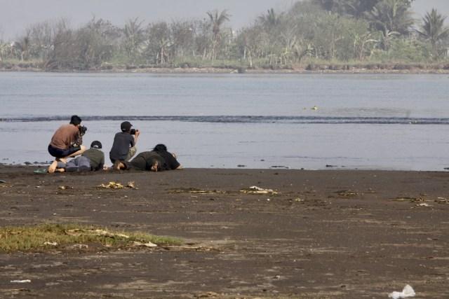 Cinta Mahasiswa untuk Burung Migran di Muara Kali Progo, Yogyakarta (615690)