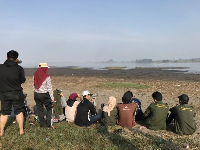 Cinta Mahasiswa untuk Burung Migran di Muara Kali Progo, Yogyakarta (615692)
