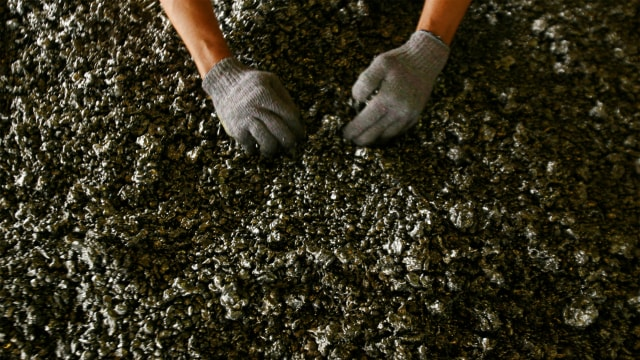 Harga Nikel hingga Batu Bara Naik, Airlangga Optimistis Ekonomi Tumbuh 5 Persen (6204)