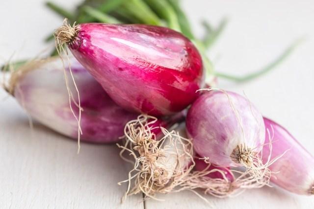 Bisa Jadi Hobi Baru, 7 Sayuran dan Rempah yang Dapat Ditanam Ulang di Rumah (311398)