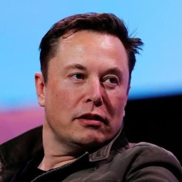 Elon Musk, CEO Tesla (Portrait)