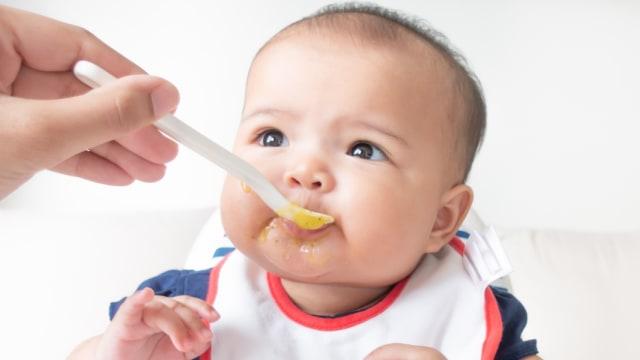 MPASI Bayi 6 Bulan, Sebaiknya Diberikan Berapa Kali Sehari? (41073)