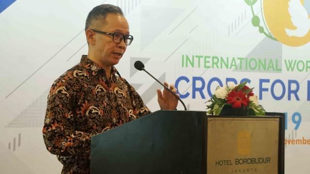 Mendag Targetkan Perundingan GSP dengan AS Rampung Akhir 2019 (722583)