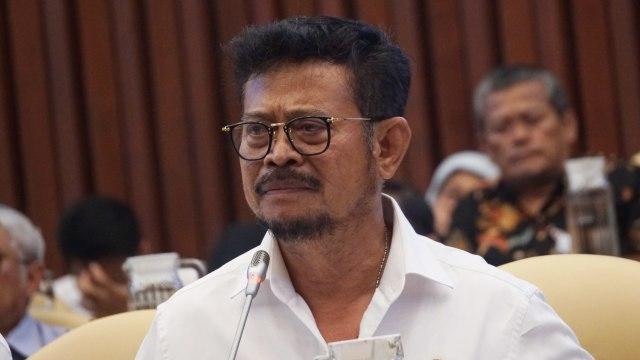 Menteri Pertanian Syahrul Yasin Limpo