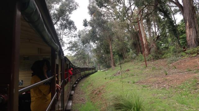 Sensasi Jadul Puffing Billy,  Kereta Uap di Australia (23641)